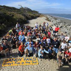 sandy paws 2011 132